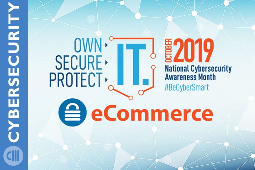 Ecommerce Security and Protection